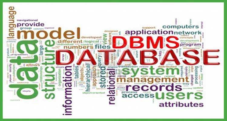 What is Database Management?