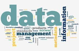 Know the Purpose of Data Management for Your Business